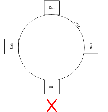 What are the connection and routing methods of DALI bus?